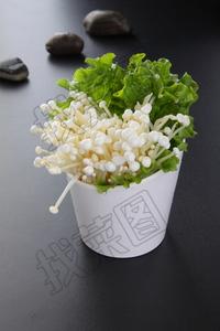 金针菇 - 找菜图