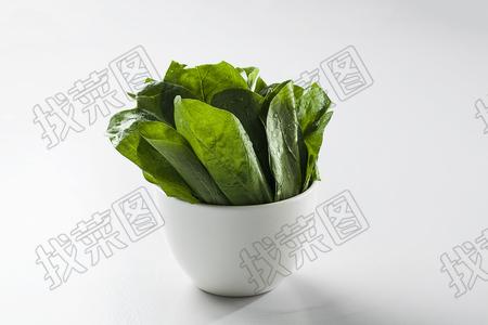 菠菜 - 找菜图