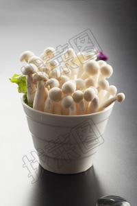 海鲜菇 - 找菜图