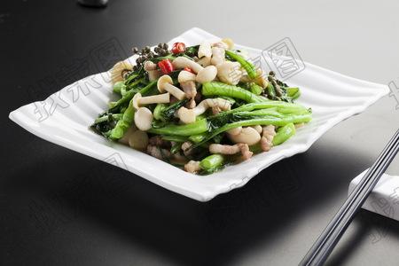 生炒菜芯白玉菇 - 找菜图