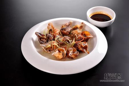 盐水海螺 - 找菜图