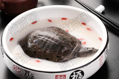 浓汤甲鱼 - 找菜图