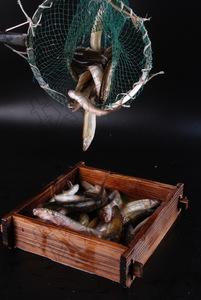 河鱼 - 找菜图