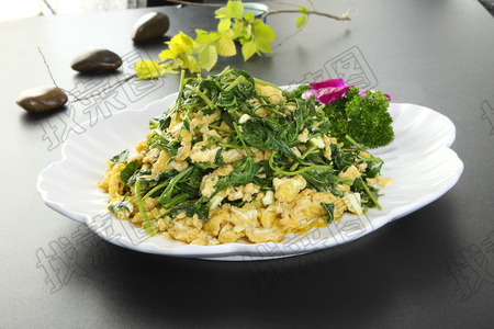 笨鸡蛋炒香椿 - 找菜图