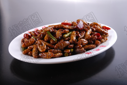辣炒蜂蛹 - 找菜图